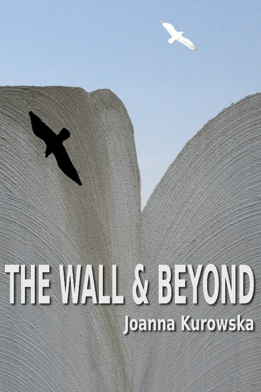 The Wall & Beyond (Paperback)