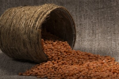 Lentils (Can) - 400g