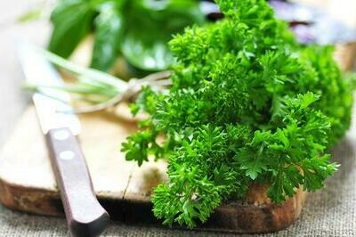 Parsley (Curly) - 100g