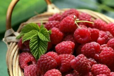Raspberries - 125g Punnet
