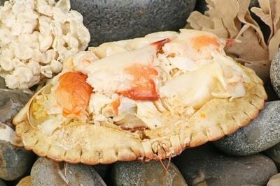 Dressed Crab (Fresh) - Each