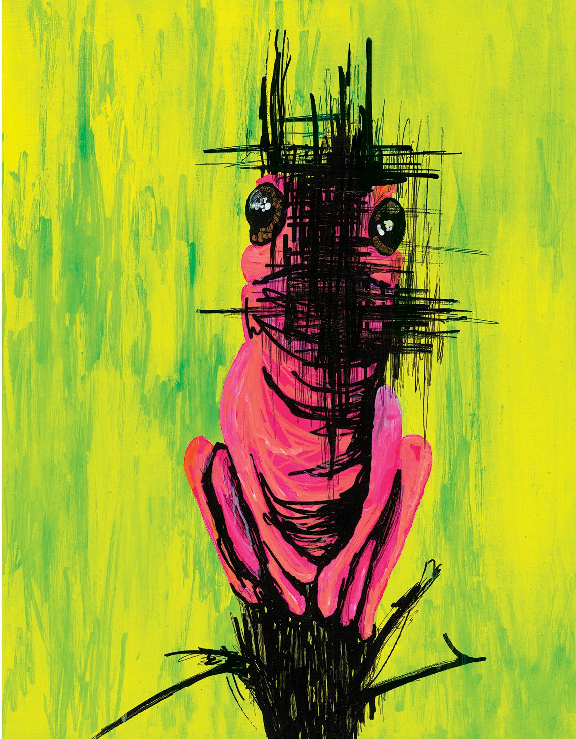 "Oophaga 11"" x 14"" unframed hand embellished print"