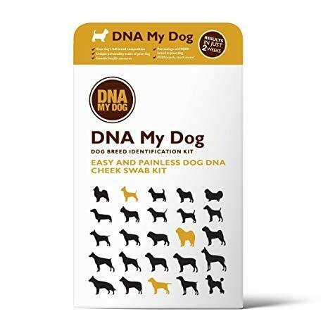 DNA My Dog Digital Coupon