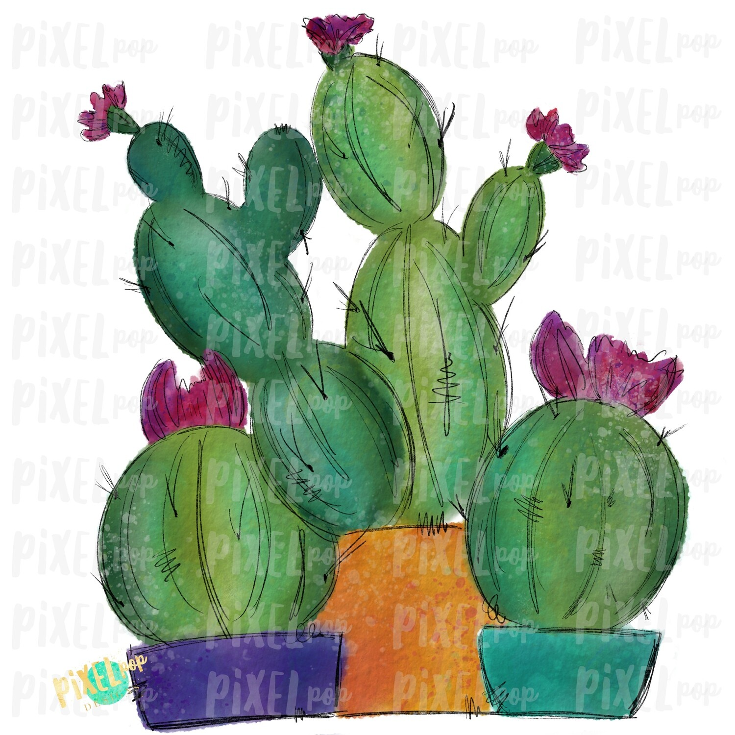 Cactus Trio Watercolor Sublimation PNG | Cactus Design | Printable | Digital Download | Cactus Design | Cactus Clipart | Cactus Watercolor