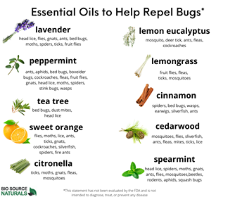 10 Essential Oils That Repel Insects - Specially Priced Set (10) 15 ml Bottles