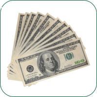 Attracting Money with EFT & Essential Oils 6 Hour Workshop Download