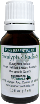Eucalyptus Radiata Pure Essential Oil