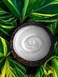 8 fl oz (240 ml) Unscented Natural Lotion Base