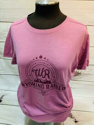 Ladies Tri Blend T Shirt