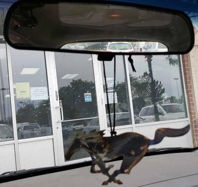 Metal Mustang Running