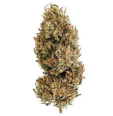 NEW! White CBG - Organic Hemp CBG Flower