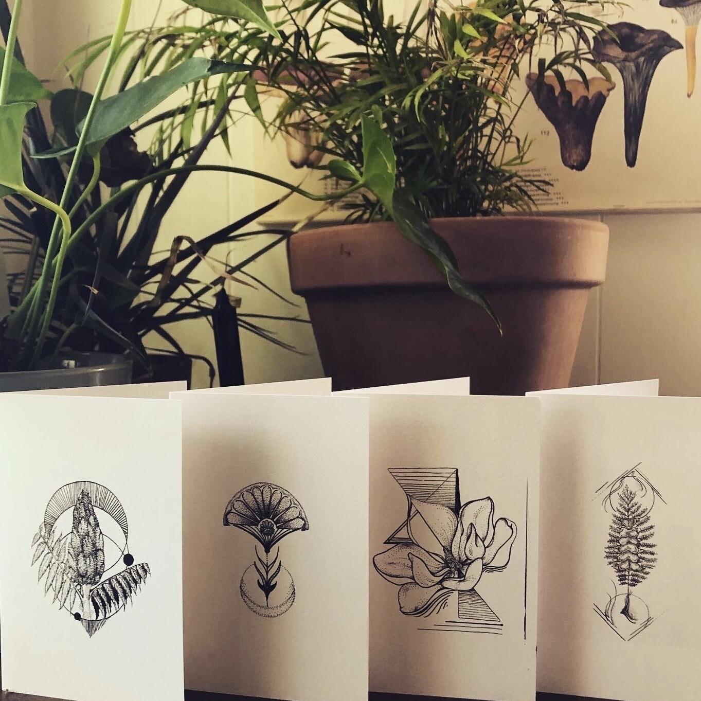 Greeting Cards (blank)