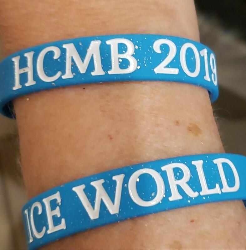 Wristband, Ice World
