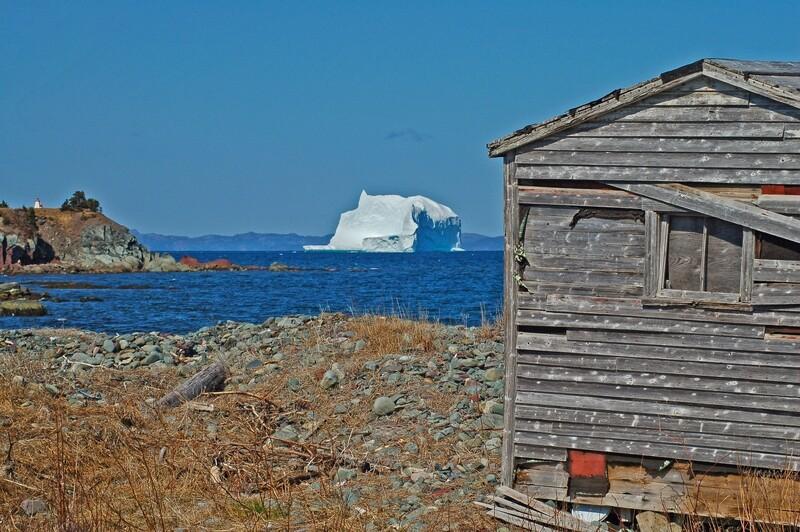 Trinity Bay Iceberg