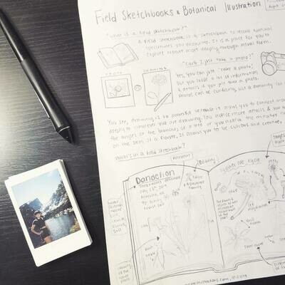 Field Sketchbook Pamphlet
