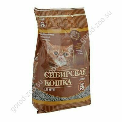 Сибирская кошка для котят 3л
