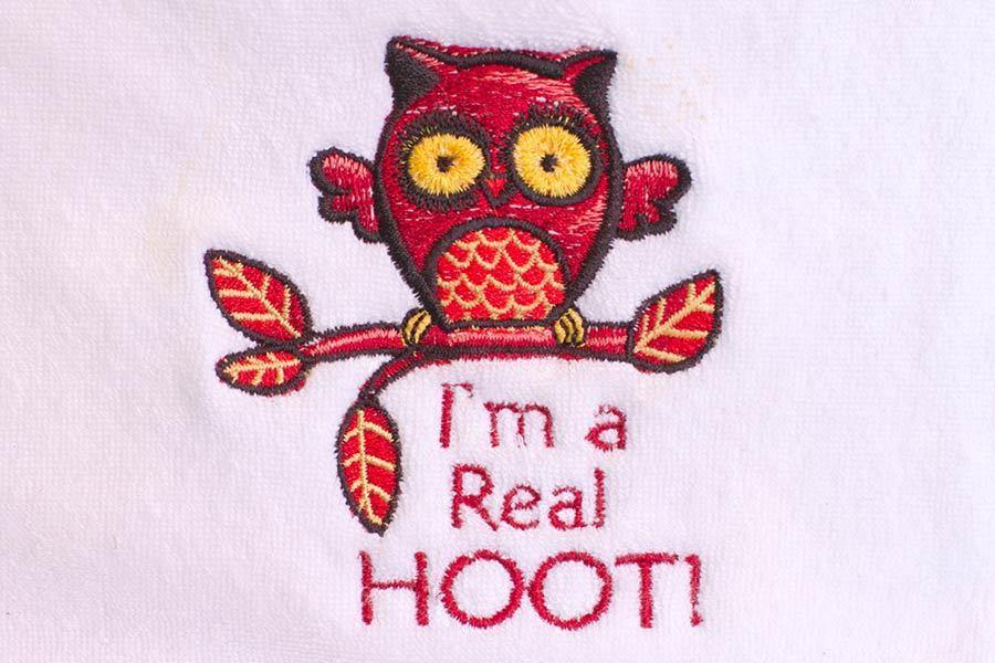 I'm a Real Hoot!! Burp Cloth