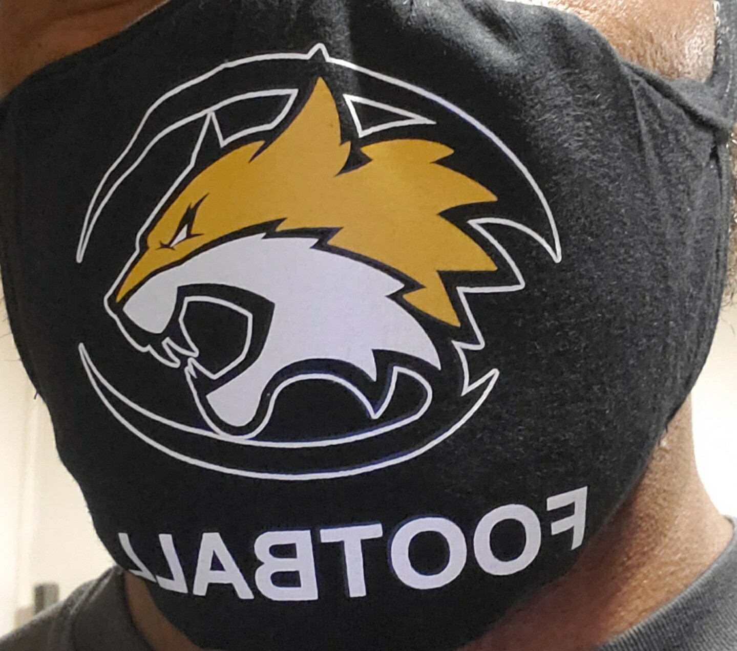 Wildcats Mask