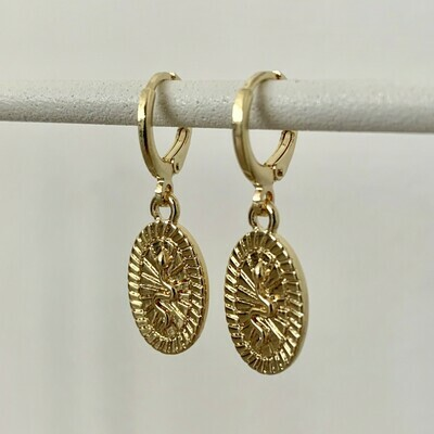 Snake coin oorbellen goud