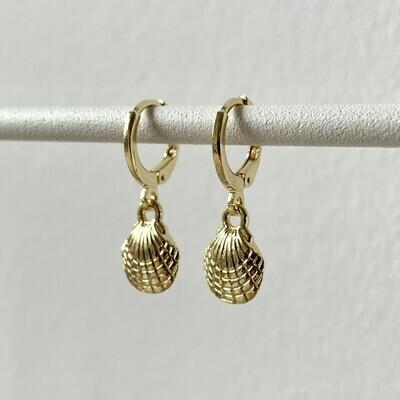 Seashell oorbellen goud