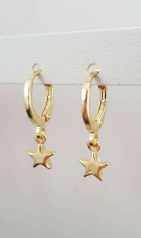 Tiny star oorbellen goud
