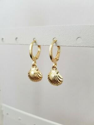 Mini beach shell oorbellen goud