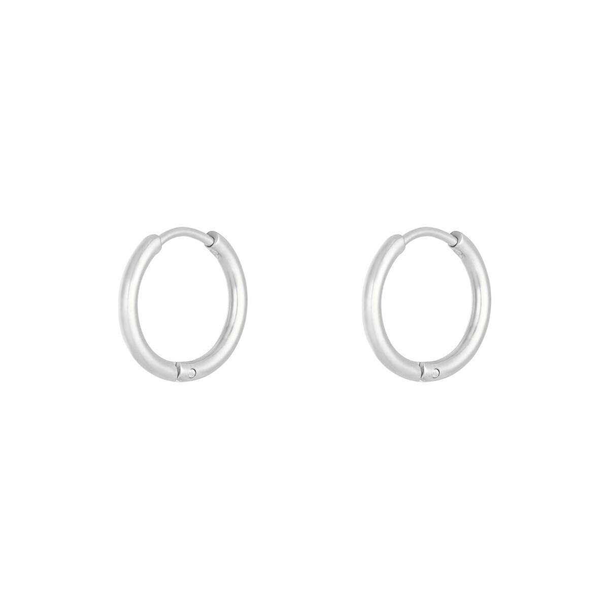 Simpele stainless steel oorringetjes zilver 14mm