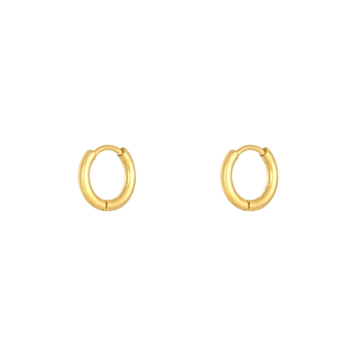 Simpele stainless steel oorringetjes goud 12 mm