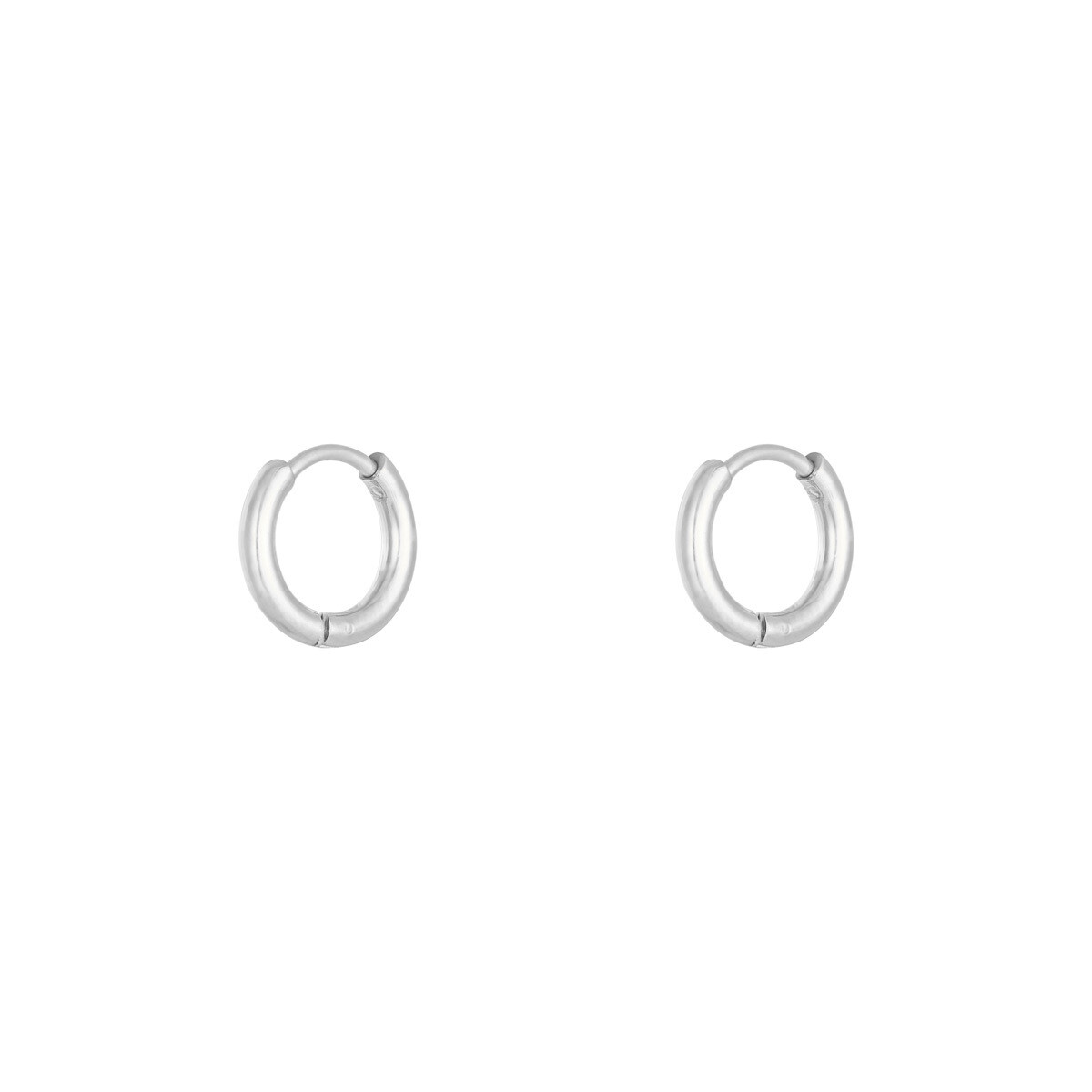 Simpele stainless steel oorringetjes zilver 12 mm
