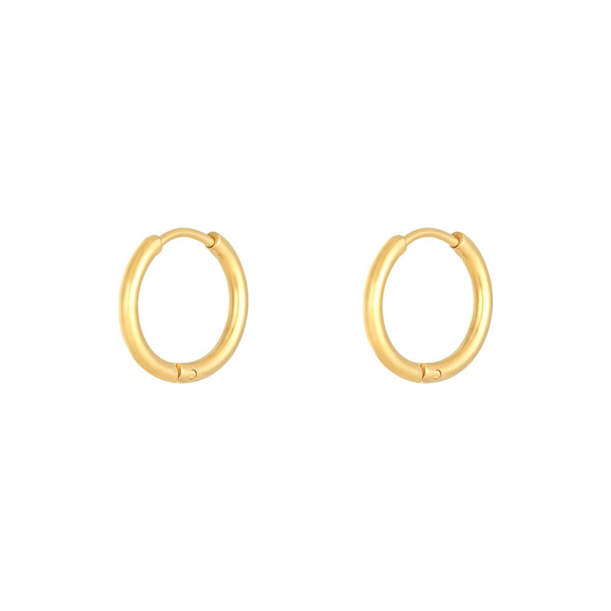 Simpele stainless steel oorringetjes goud 16 mm