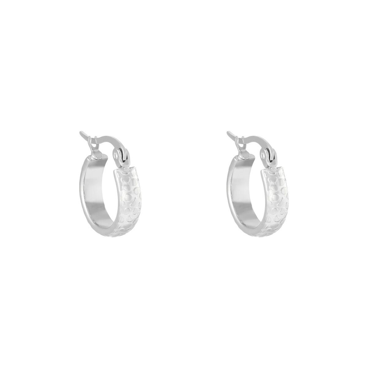 Panterprint oorringetjes zilver stainless steel