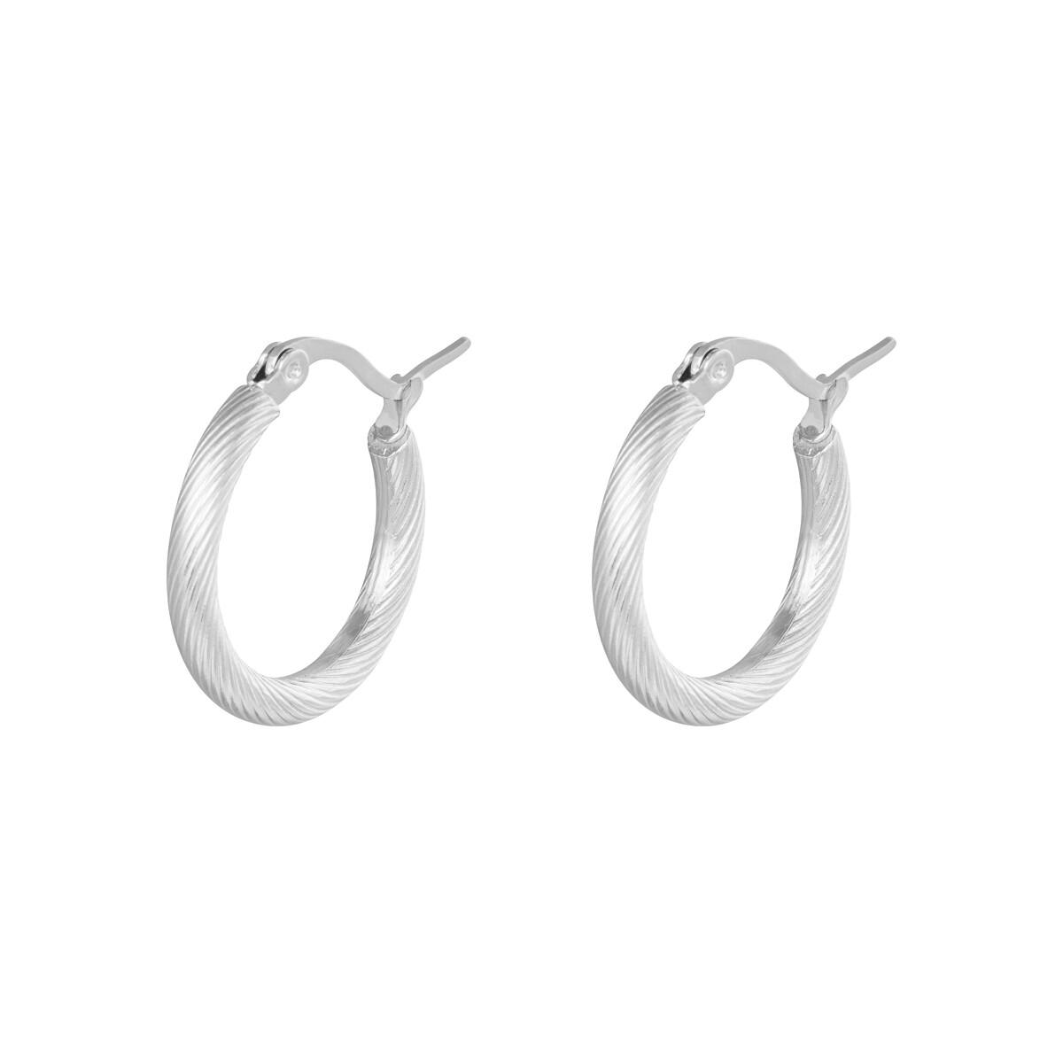 Twist oorringetjes zilver 22mm stainless steel