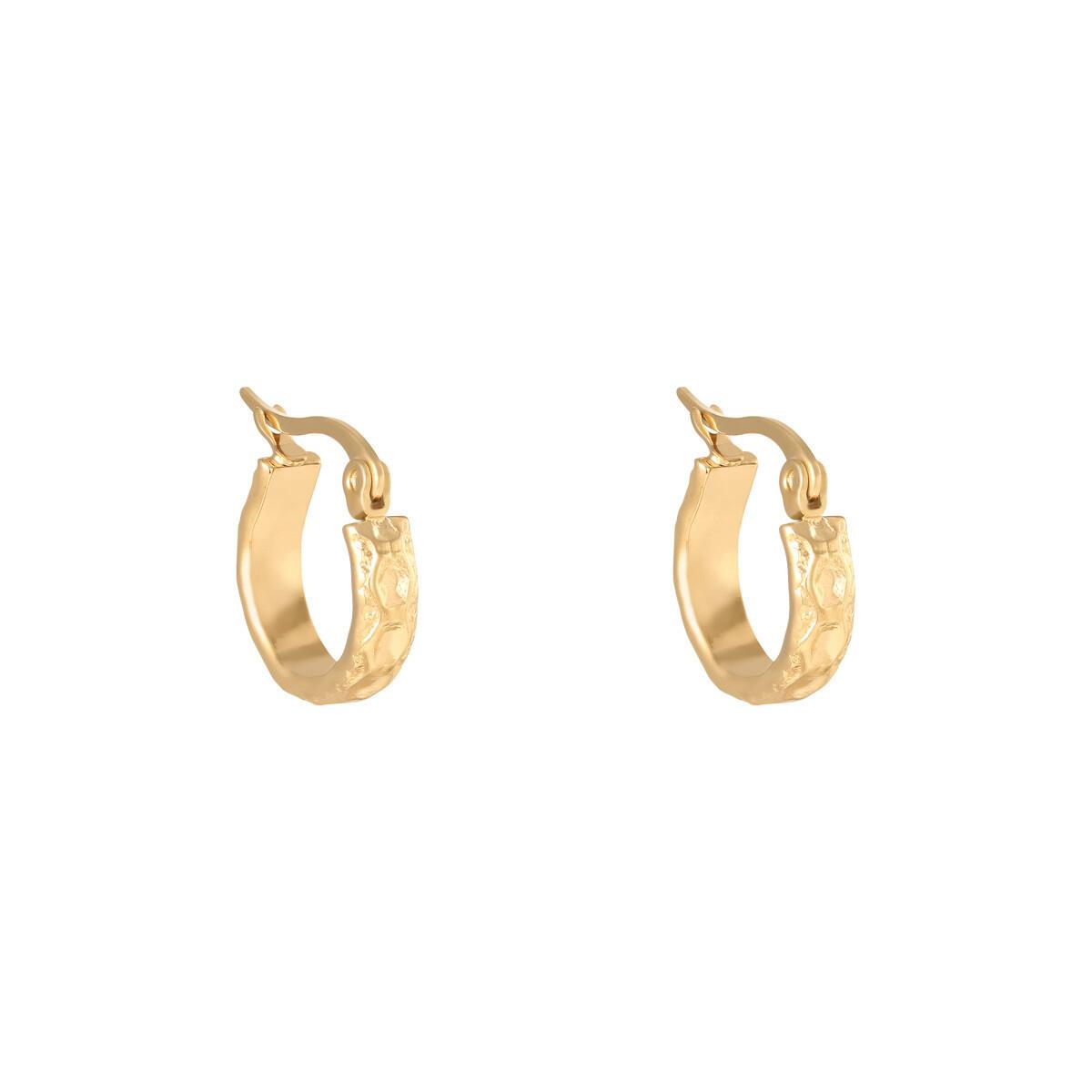 Kettingprint oorringetjes goud stainless steel