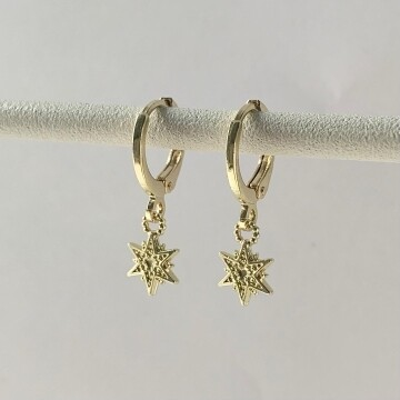Mini lovely star oorbellen goud