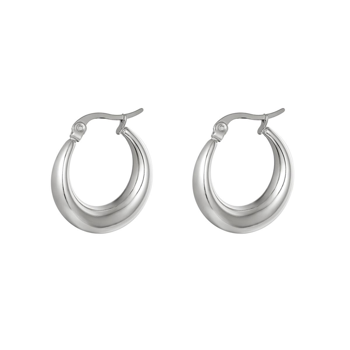 Gewelfde oorringetjes zilver 23 mm stainless steel