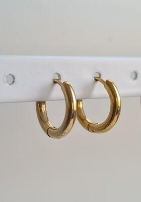 Nice oorringetjes goud stainless steel 10 mm