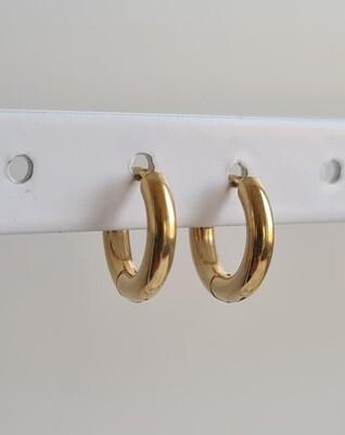 Nice oorringetjes goud stainless steel 8 mm