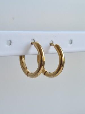 Nice oorringetjes goud stainless steel 12 mm