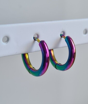 Nice oorringetjes duochrome stainless steel 10 mm