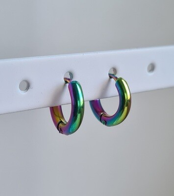 Nice oorringetjes duochrome stainless steel 8 mm