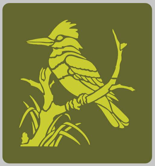 Kookaburra Bird furniture stencil