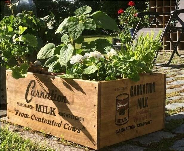 Carnation Milk box stencil set for re-enactors ww2 army Jeep prop