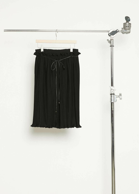 Fine pleats Skirt