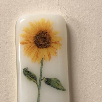 Sunflower White Pocket Hug