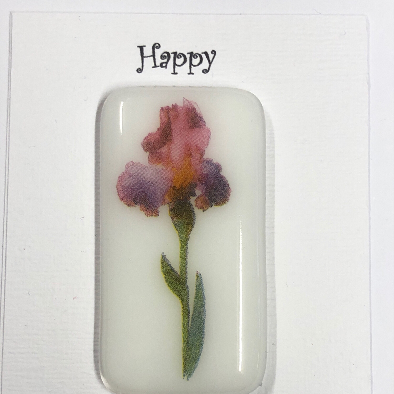 White Pink Iris Pocket Hug