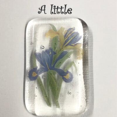 Blue Iris Pocket Hug