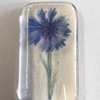 Cornflower  Pocket Hug