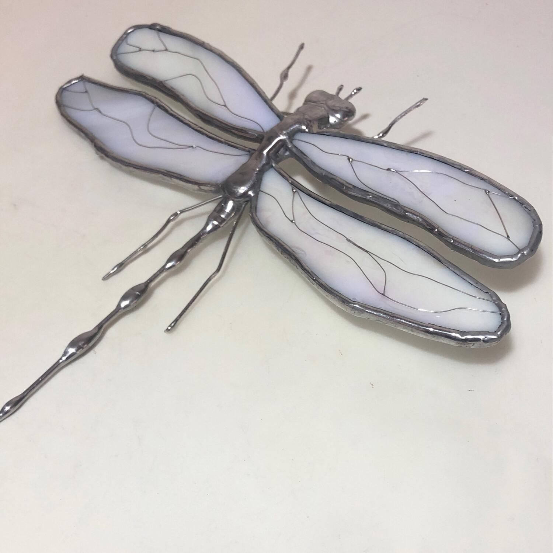 White Iridescent Dragonfly