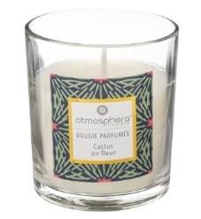 Bougie parfumée Cactus en Fleur 110 gr