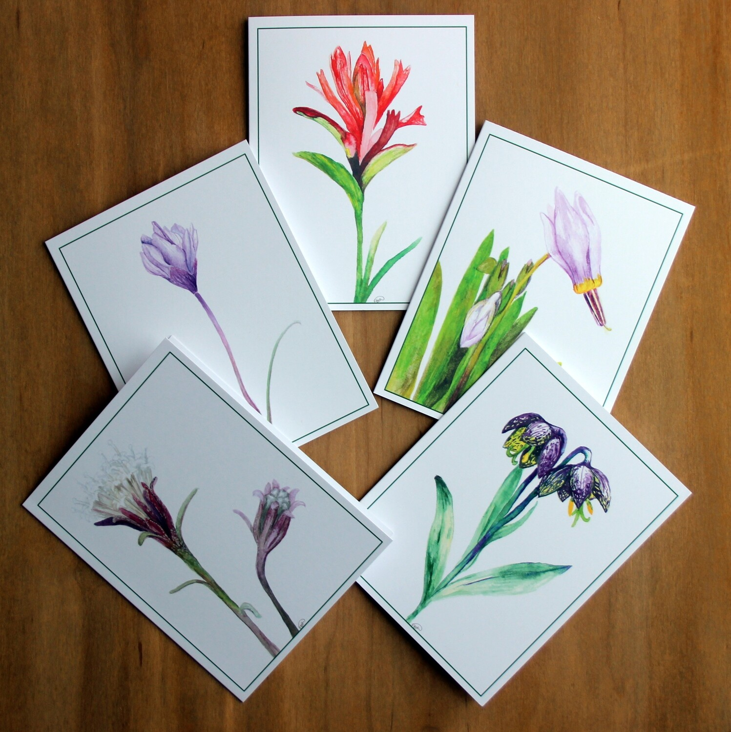 Wildflower Greeting Cards (set of 10)